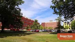 Oregon State University Campus Tour - YouTube