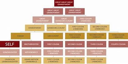 Relationships Cobbold Trust History