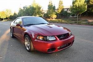 For Sale 2003 svt cobra 8,000 miles