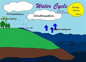 Show Me The Diagram Of Water Cycle