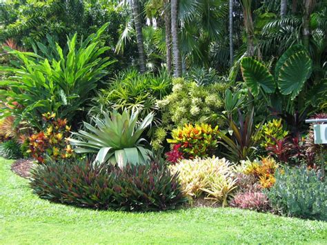 Wholesale Tropical Foliage  Sorrento Fl  Shane Tinker