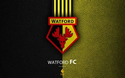 wallpapers watford fc  english football club