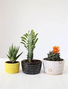 Pot A Cactus : 17 best ideas about ceramic flowers on pinterest ceramics ideas ceramics and clay flowers ~ Farleysfitness.com Idées de Décoration