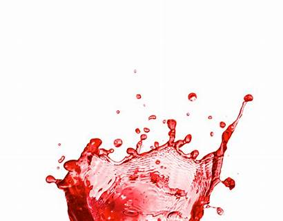 Splash Blueberry Glow Pomegranate Smoothies