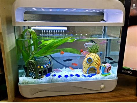 Z Fish Tank Decorations by Ornament Picture More Detailed Picture About 1pcs Mini