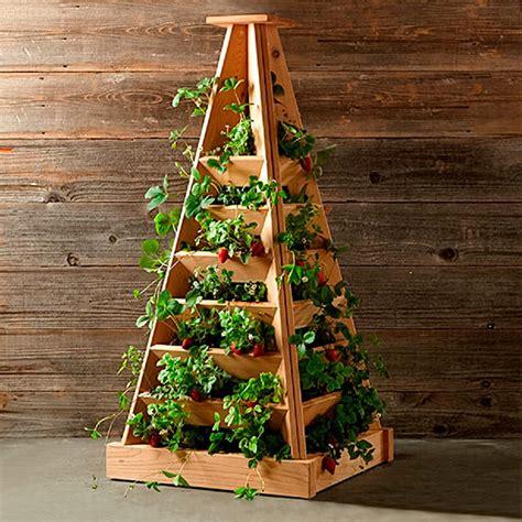 pyramide selber bauen pflanz pyramide h 246 he 120 cm breite 56 cm l 228 nge 56 cm g 228 rtner p 246 tschke