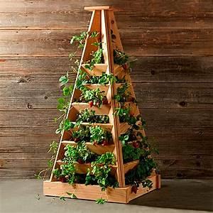 Pyramide Selber Bauen : pflanz pyramide h he 120 cm breite 56 cm l nge 56 cm ~ Lizthompson.info Haus und Dekorationen