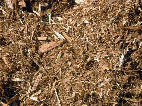 shredded cedar mulch bulk cedar mulch shredded patiotown com
