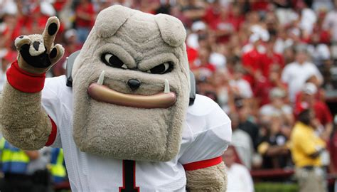 The New Year's Resolutions Of Georgia Mascots