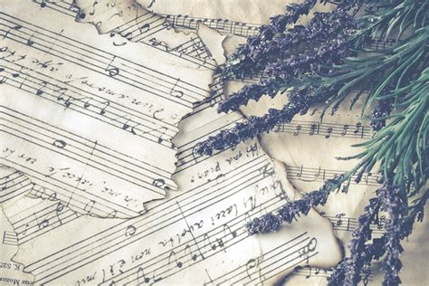 Mūzika - Zeltrīti