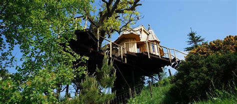Treehouse Holidays In Norfolk