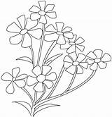 Coloring Flower Breath Pages Jasmine Spinach Periwinkle Plant Cosmos Drawing Flowers Babys Roses Parts Colouring Opposites Printable Getcolorings Cross Plants sketch template