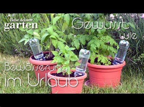 Pflanzen Während Urlaub Bewässern by Gewusst Wie 9 Bew 228 Sserung Im Urlaub Mit Pet Flaschen