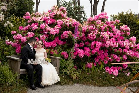 weddings at mendocino coast botanical gardens about