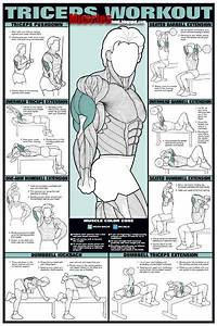 Daily Bodybuilding Motivation  Best Exercise Chart