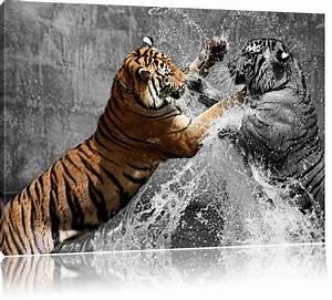 Leinwandbilder Schwarz Weiß : prachtvolle tiger k mpfen schwarz wei leinwandbild tiere leinwandbilder ~ Markanthonyermac.com Haus und Dekorationen