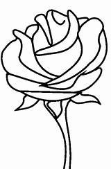 Coloring Roses Pages Rose Printable sketch template