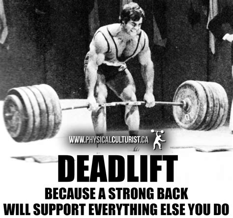 Why I Deadlift Everyday  Aesthetic Physiques