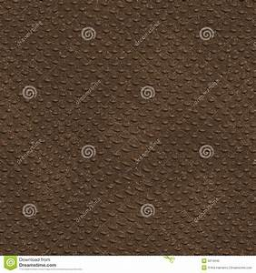 Seamless Crocodile Skin Stock Photo - Image: 6014340