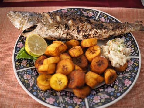 cuisine p駻鈩e cuisine gabon by taku ichiyama pantropic food