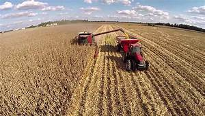 Corn Harvest at Hughes Farms in Murray, KY - YouTube