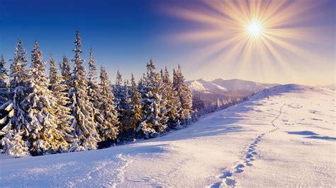 Winter Wallpaper Desktop by Winter Forest Desktop Wallpaper Wallpapersafari