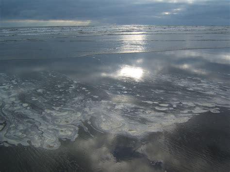 washington ocean pacific state beach otman22 matthew trip pm posted