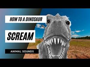 The Animal Sounds: How Dinosaur Scream / Sound Effect / Animation