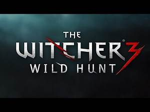The Witcher 3: Wild Hunt - Max Settings Gameplay on ASUS ROG G751 jy (1080p60fps)