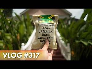 TRYING THE BEST COFFEE IN THE WORLD - 🇯🇲 Jamaica