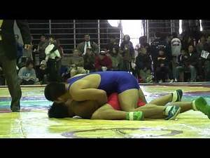 Japanese freestyle wrestling レスリング veteran's match