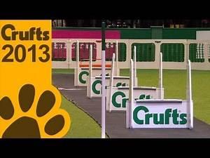 Flyball Quarter Finals - Short Highlights - Crufts 2013