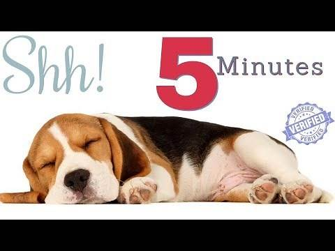 Sound To Make Your Dog Sleep within 5 Minutes | Dog Hypnosis