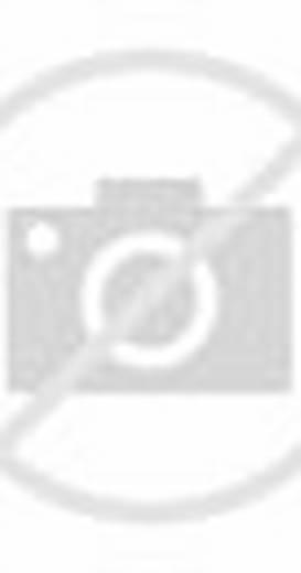 Superman: Brainiac Attacks (Video 2006)