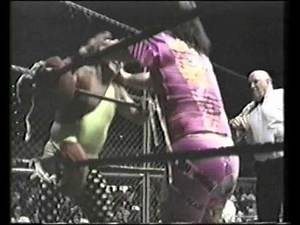 Jerry Lawler vs. Randy Savage (Memphis Cage Match 1993)