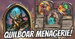 OMG NEW QUILBOAR MENAGERIE IS INSANE!   Hearthstone Battlegrounds