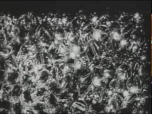 Cinq Minutes de Cinema pur - Henri Chomette (1926)