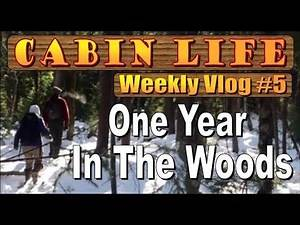 OFF GRID CABIN LIFE ~ A YEAR IN THE WOODS Vlog #5