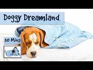 Doggy Dreamland! Soothing Sleep Music for Dogs. Calm Down Your Dog with 30 Minutes of Relaxing Music