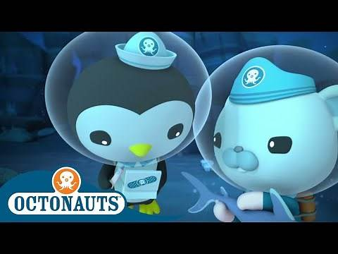 Octonauts - Baby Hammerhead Shark in Trouble | Cartoons for Kids | Underwater Sea Education