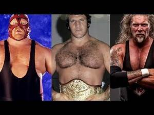 Wrestlers Who Died in 2018 - Neidhart, Sammartino, Vader