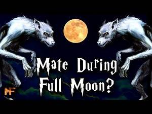 What if Two Werewolves Mated During the Full Moon? (CANON): Harry Potter Explained