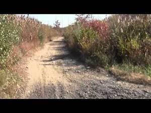 Bay Circuit Trail Easton MA: Hockomock Swamp Wildlife Management Area Part 1.