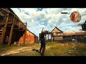 The Witcher 3 Mastercrafted Feline Armor Set And Silver Sword