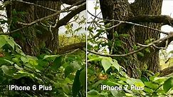 Comparing video and zoom on the Apple iPhone 7 Plus vs iPhone 6 Plus