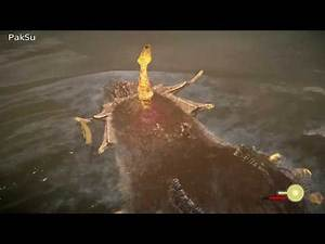 Shadow of the colossus : 7th Hydrus Colossus Map location