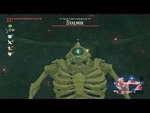 Zelda: Breath of the Wild (No Commentary) #066, Hyrule Castle: Hylian Shield; Muwo Jeem Shrine