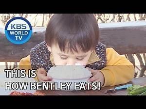 This is how Bentley eats! [The Return of Superman/2020.04.26]