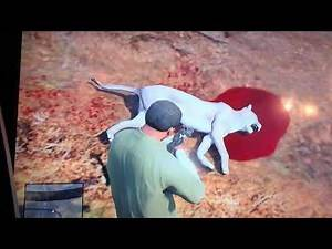 Mountain Lion Attack In GTA 5