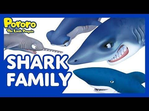 Meet Pororo and Friends Ep.11 Shark Family | Meet our clumsy sharks! | Pororo the Little Penguin